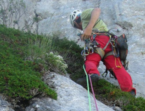 Climbing initiation course with expert instructors
