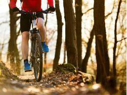 bici en el monte