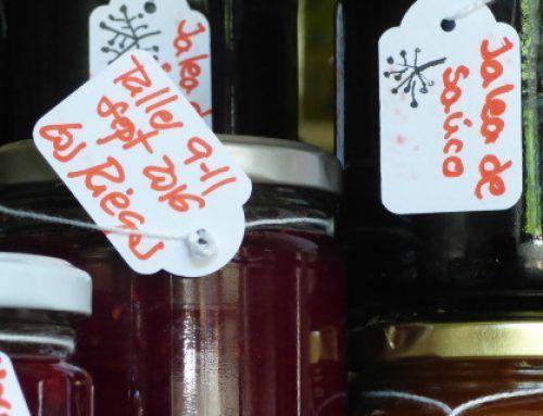 Taller de IDENTIFICACIÓN y CONSERVAS de frutos silvestres